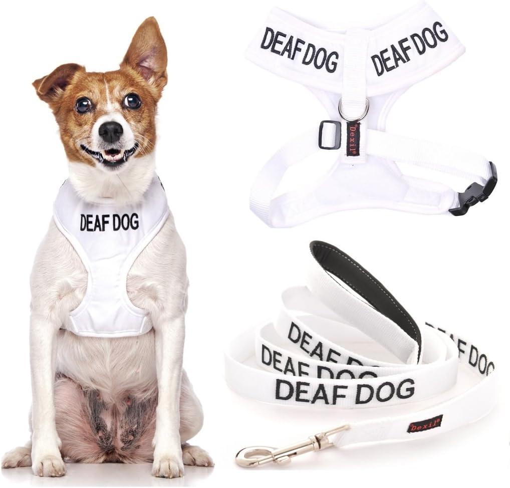 Deaf - Arnés de Neopreno Acolchado para Perro (Perro Tiene ...