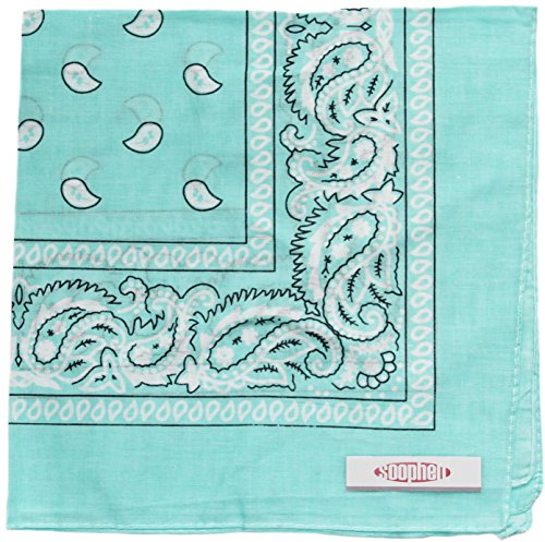 (Soophen Paisley One Dozen Cowboy Bandanas (Light Blue 22 X 22 in ,)