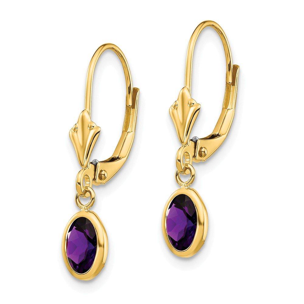 Mia Diamonds 14k Yellow Gold 6x4mm February//Amethyst Earrings
