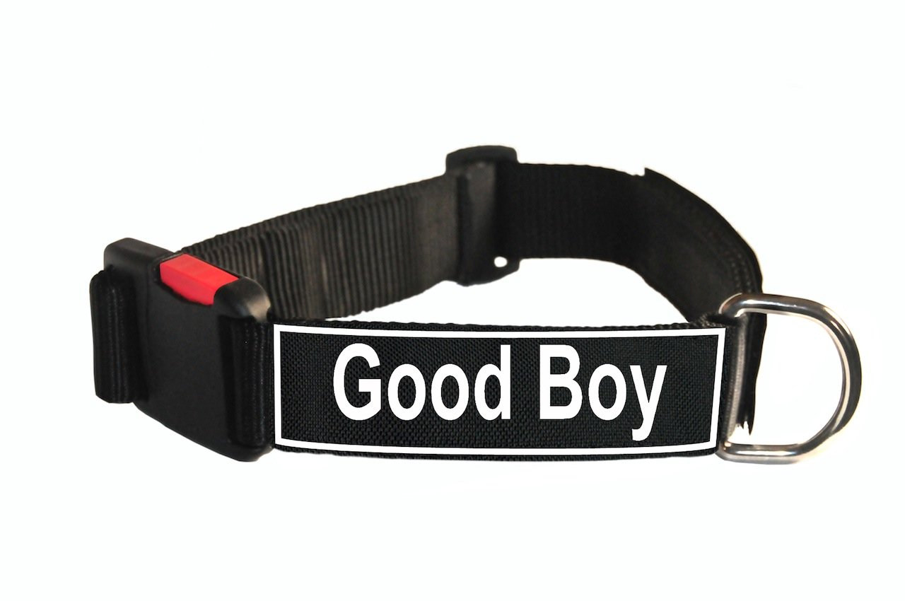 Dean & Tyler Nylon Patch Dog Collar with Good Boy Patches, Medium, Fits Neck 21 to 26-Inch