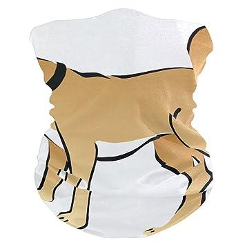 Amazon Com Ah Yellow Cartoon Dog Bavaclava Face Mask For Women
