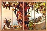 View from the window grape vine sea by RUTH MERCIER Tile Mural Kitchen Bathroom Wall Backsplash Behind Stove Range Sink Splashback 3x2 12'' Ceramic, Matte