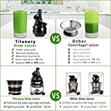 Slow Masticating Juicer extractor by Tiluxury with
