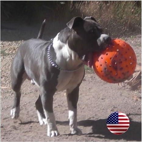 Indestructible 10 gran perro bola en naranja Pit Bulls mastín ...