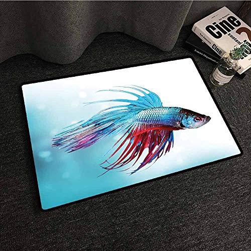 Large Floor Mats for Living Room Colorful Aquarium,Siamese Fighting Betta Fish Swimming in Aquarium Aggressive Sea Animal,Sky Blue Dark Coral,W30