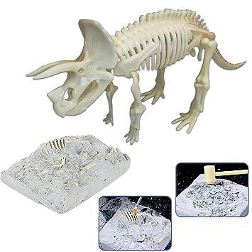 Unisex Kit de esqueleto
