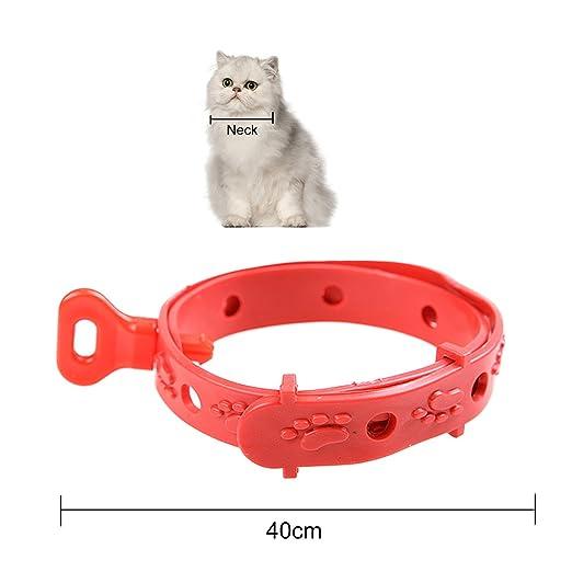 Beetest 4 PCS 42cm Adjustable Pet Cat Dog Puppy Rabbit Health Anti Lice Collar Anti Flea Tick Pest Mosquitoes Repellent Collar Neck Strap