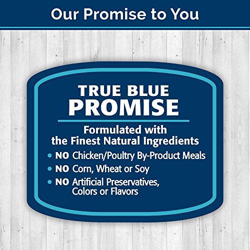 Blue Mini Bars Apple & Yogurt Biscuit Dog Treats 20-Oz