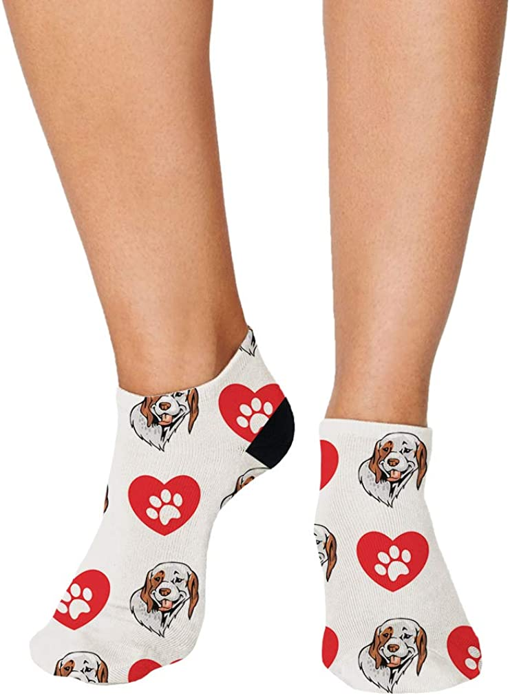 Braque Du Bourbonnais Dog Pattern #2 Men-Women Adult Ankle Socks