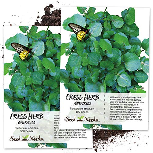 Seed Needs, True Watercress (Nasturtium officinale) Twin Pack of 500 Seeds Each ()