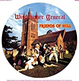 Friends of Hell [Picture Disc] [Import anglais]