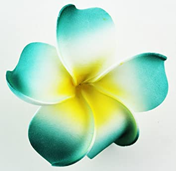 Amazon hawaiian flower hair clip tropical flower summer hair hawaiian flower hair clip tropical flower summer hair accessory teal yellow mightylinksfo