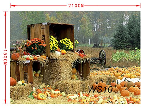 LB Halloween Pumpkin Backdrop for Photography 7x5ft Vinyl Rustic Farm Harvest Season Fall Backdrop for Party Event Portrait Photo Booth Background by LB (Image #1)