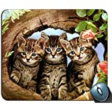 Gaming Mouse Mat,Cats in A Log Customized Mouse Pad Rectangle Mouse Pad Gaming Mouse mat