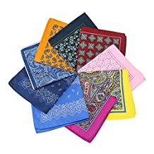 Mantieqingway Men's Paisley Handkerchiefs Polyester Pocket Square Hankies 10PCS/LOT