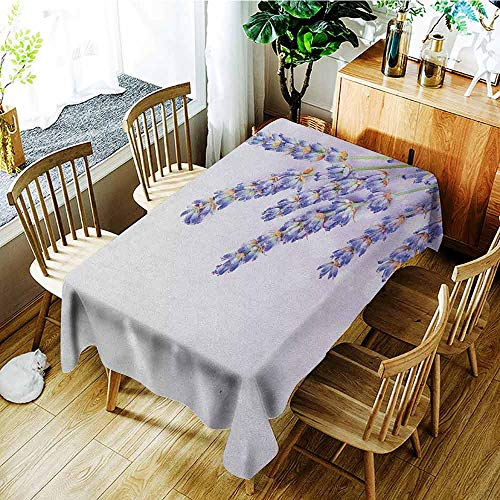 - XXANS Tablecloth for Kids/Childrens,Lavender,Little Posy of Medicinal Herb Fresh Plant of Purple Flower Spa Aromatheraphy Organic,Party Decorations Table Cover Cloth,W60X90L Lavander