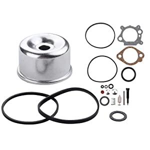 Dxent 498260 Carburetor Overhaul Kit 796611 Float Bowl for Briggs and Stratton 492495 493762 490937 398183 498261 493640 398191 3.5HP 4HP Max Series Quantum 5HP Industrial Plus Enngine Lawn Mower