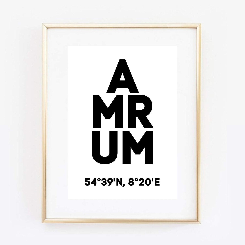 Din A4 Kunstdruck ungerahmt Amrum Koordinaten Typographie Insel Nordsee Modern Druck Poster Bild