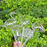 Calunce 2pcs Small Hand Blown Clear Glass Self