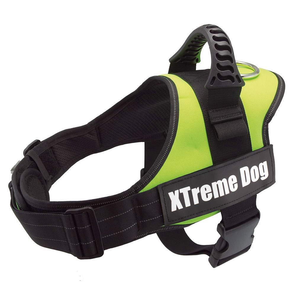 Arquivet 17720 Arnés Xtreme Dog, Verde Neón, XL (80-110 cm ...