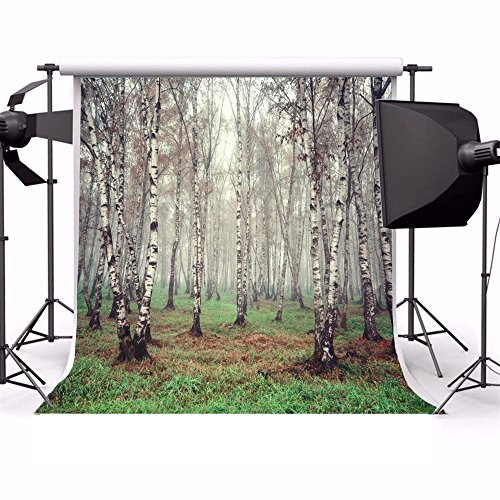 Laeacco 6x6ft Vinyl Backdrop Morning Fog Forest Birch Trees Photography Background Nature View Grove Grassland Scene Children Portraits Backdrop TV Video Shoot Backdrop Studio Props