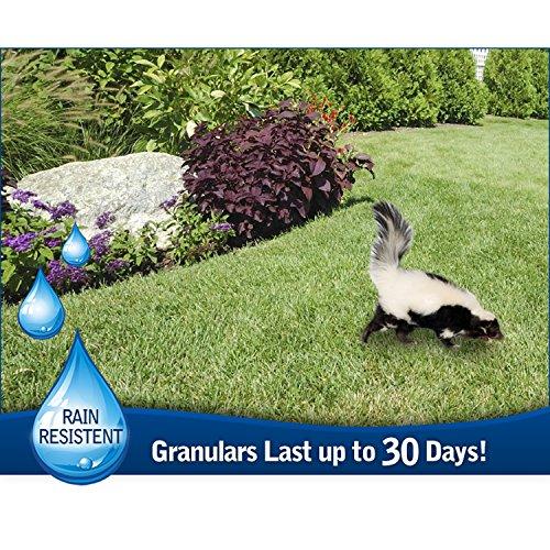 Havahart Critter Ridder 3142 Animal Repellent Granular Shaker, 2-Pound