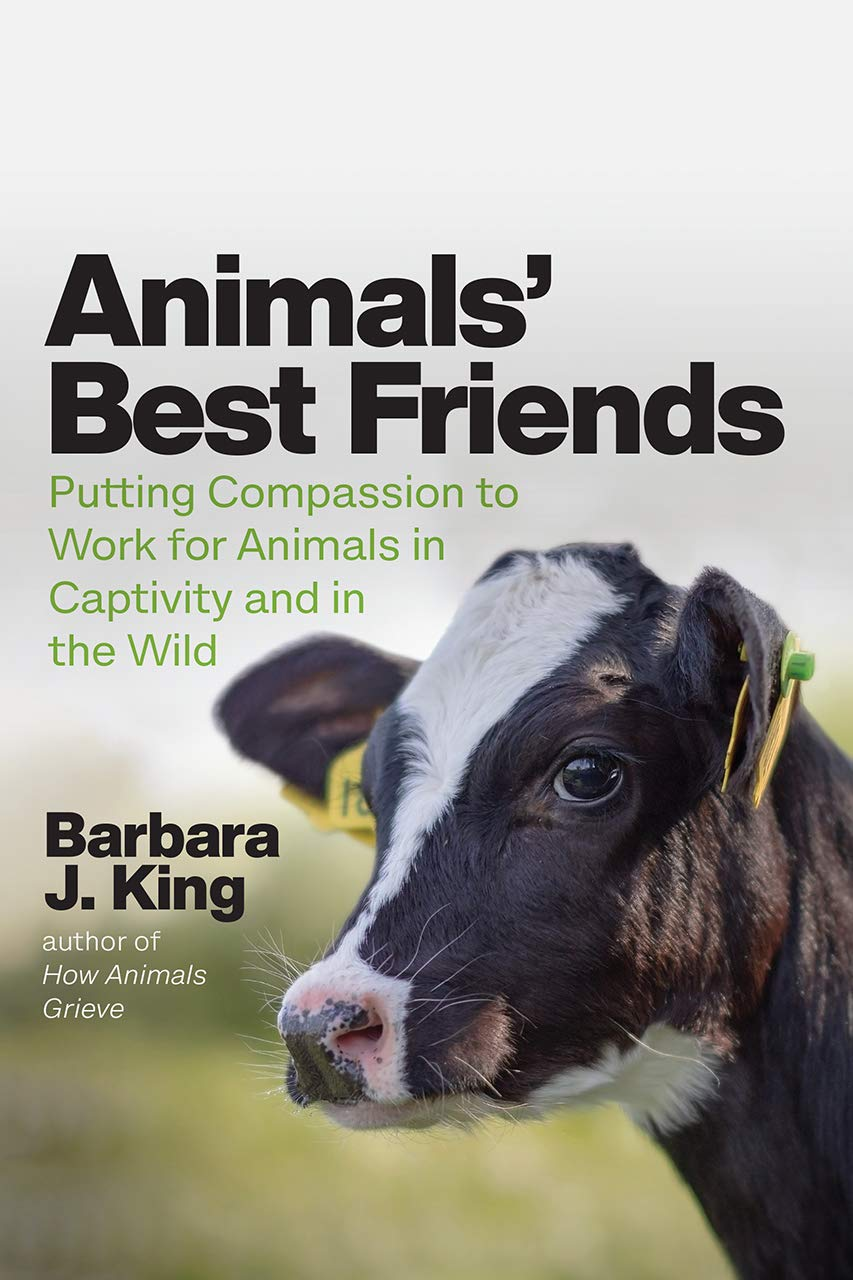 Animals' Best Friends: Putting Compassion to Work for Animals in Captivity and within the Wild