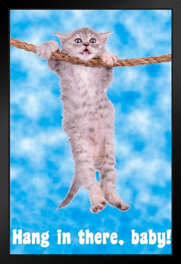 Cat Retro Motivational Framed Poster 14x20 inch Poster Foundry 183185 Hang in There Baby