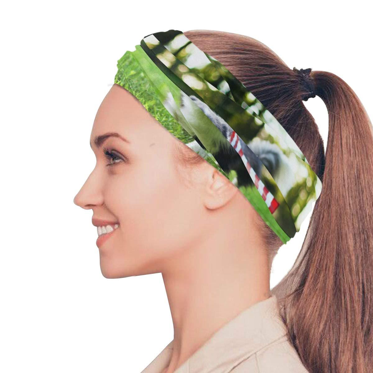 Muffler Magic Neck Gaiter Avocado Green Balaclava Womens Headband Scarf Mens Versatile Bandana Headwrap Headwear