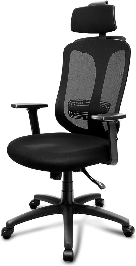 INTEY Chaise de Bureau Ergonomique, Fauteuil de Bureau Multi