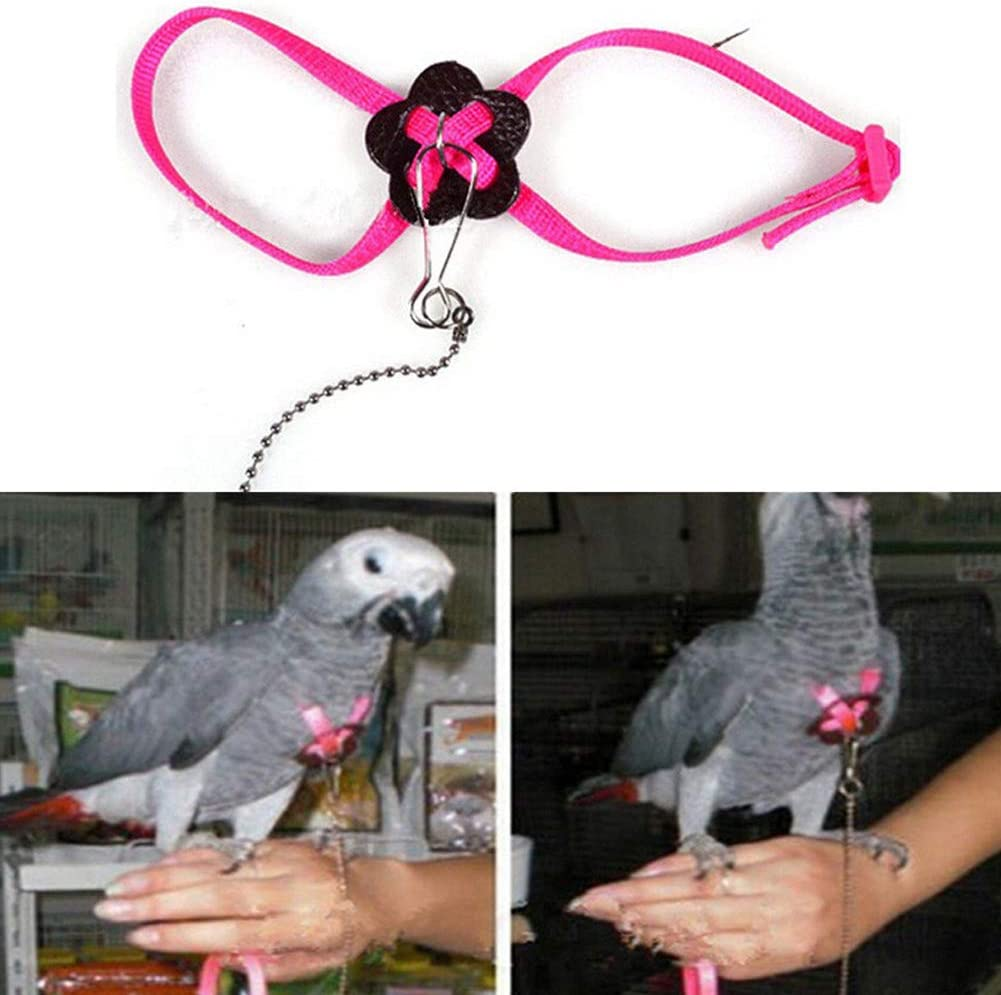 Anti Bite YOUNICER Parrot Adjustable Bird Harness and Leash for Outdoor Flying Cockatiel Grey Macaw