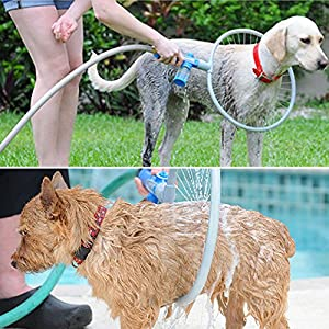 Glantop Pet All-around Washer Ring for Dog Quick Easy Cleaning Large by Glantop 13
