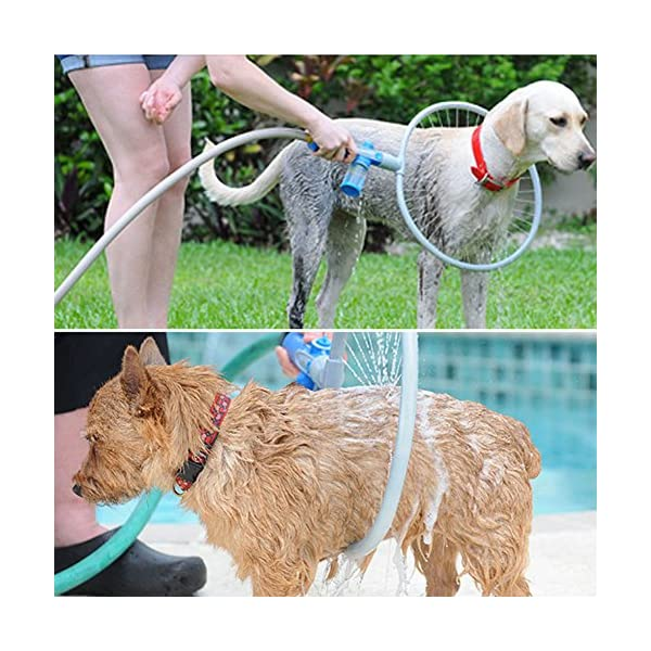 Glantop Pet All-around Washer Ring for Dog Quick Easy Cleaning Large by Glantop 1