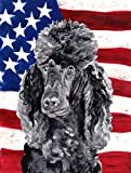 Caroline's Treasures SC9626GF Black Standard Poodle with American USA Flag, Small, Multicolor