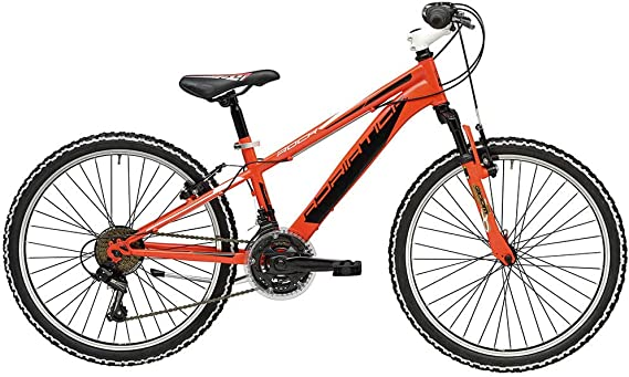 Bicicleta ROCK de 24 pulgadas para niño de Cicli Adriática con ...
