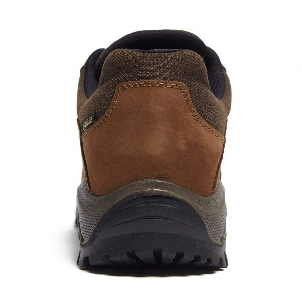 x SCARPA Cyrus GTX Mens Trekking Shoe Brown