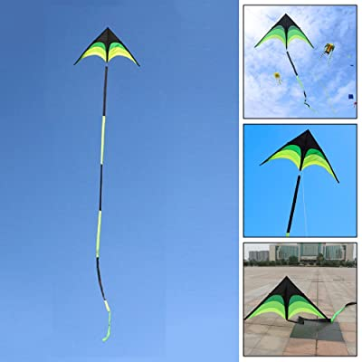 Kite for Kids/Toddlers/Adults, 2M Prairie Pattern Triangular Kite Ideal Beach Picnic Toy with 10M Black And Green Floating Tail: Toys & Games