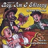 Yom Hashishi-Boy Am I Shleepy by Yitzy Rabbi Erps (2010-10-05)