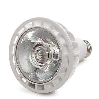 Greenice | Bombilla de LEDs PAR30 E27 20W 1800Lm 30.000H | Blanco Frío