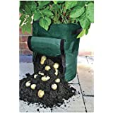 potatopot kartoffel pflanztopf k bel f r pflanzkartoffeln auf balkon terrasse garten. Black Bedroom Furniture Sets. Home Design Ideas