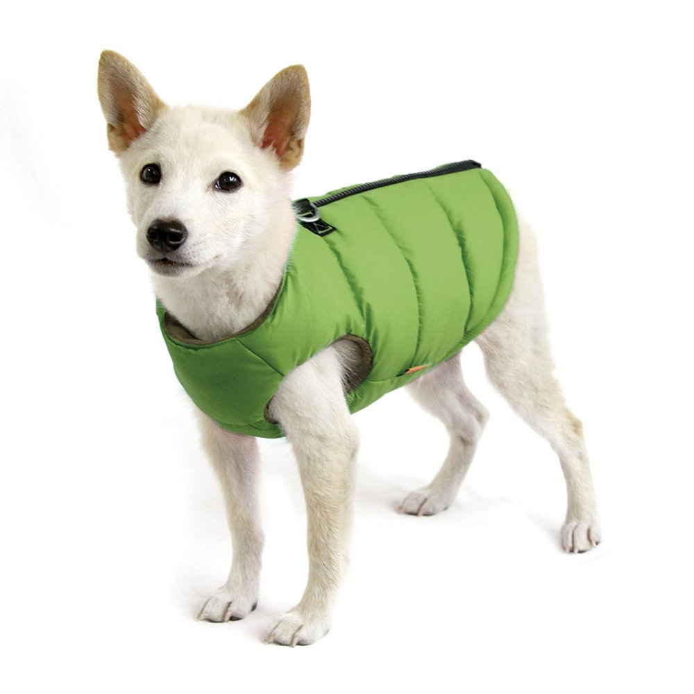 Green Solid Large Chest (20\ Green Solid Large Chest (20\ Gooby 74003-SGRN-L Padded Cold Weather Vest for Small Dogs with Safe Fur Guard Zipper Closure, Large Chest (20 ), Green Solid