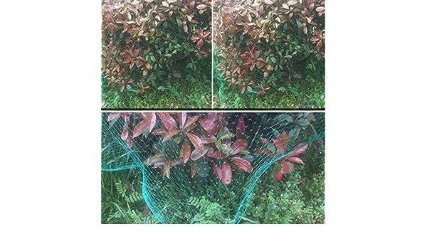 JIAYUAN - Malla de Tela Resistente para Cultivo de Flores de ...
