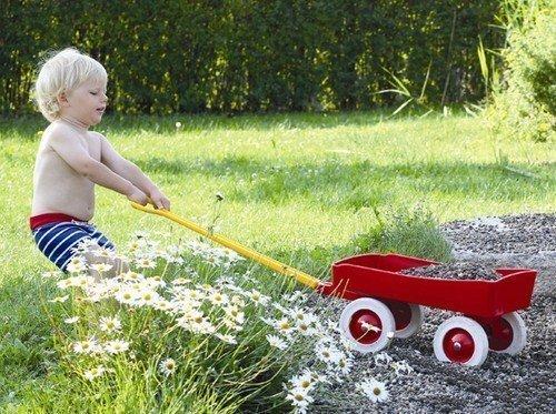 Kinder Bollerwagen Handwagen Ziehwagen