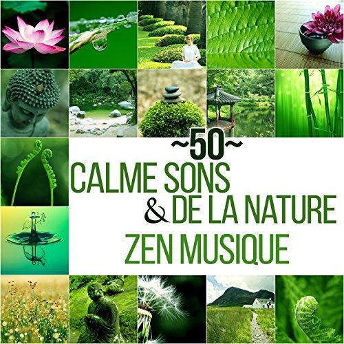 50-calme-sons-de-la-nature-zen-musique-detente-et-relaxation-avec-bruits-de-la-nature-et-new-age-bon