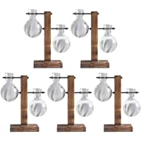 Fenteer 5 Pack Hydroponic Vase with Retro Wooden Stand Propagation Stations for Hydroponics Plants Office Desk Wedding…