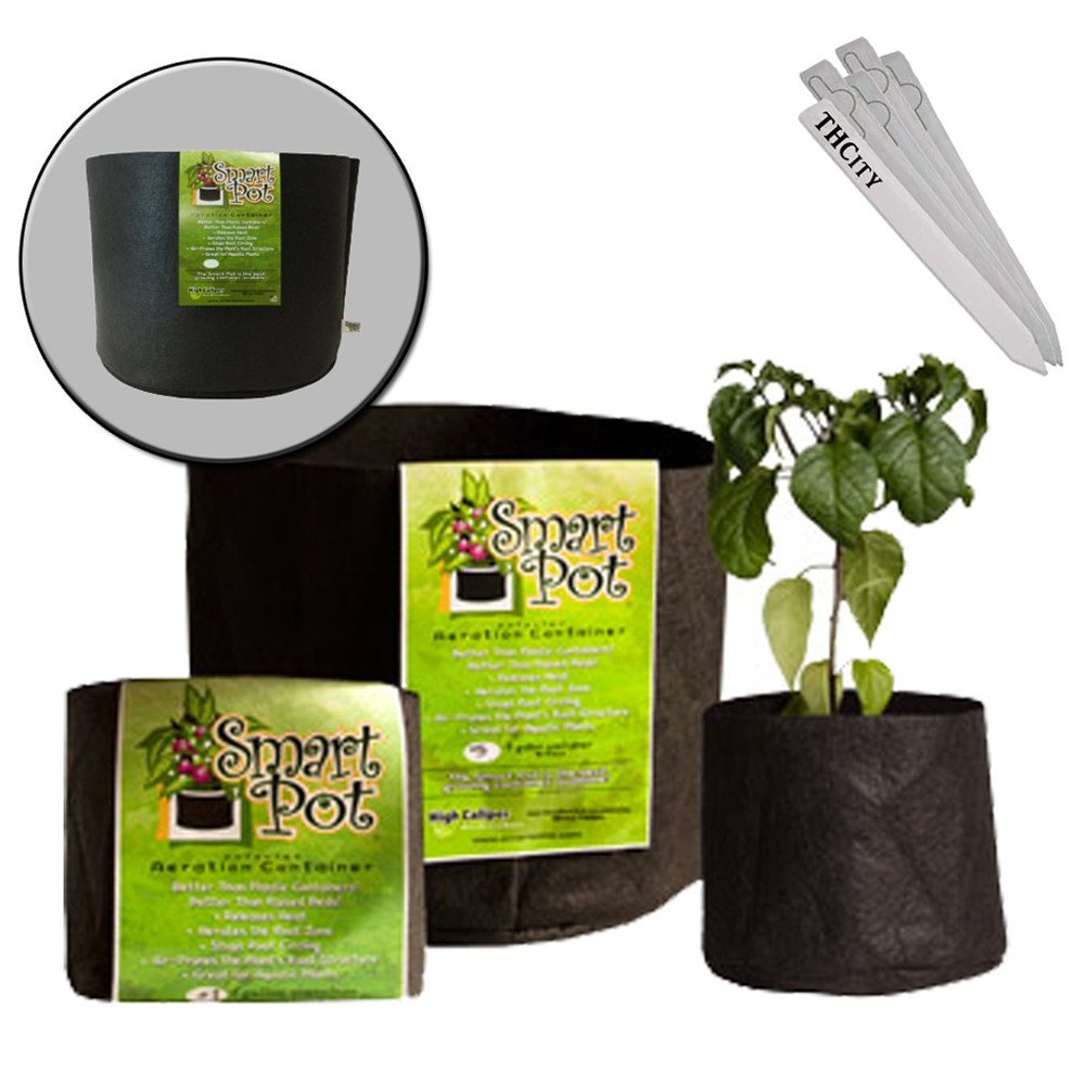 SMART POT GROW DIRT CONTAINER AERATION PLANT BAG [1 2 3 5 GALLON] VARIOUS AMOUNT + THCiTY PLANT STAKES - 3 Gallon / 25 Pot by Smart Pot