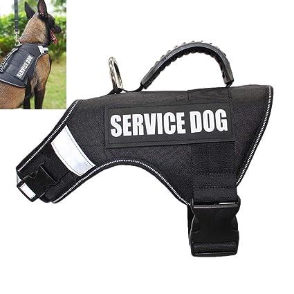 DINGG Arnés del Animal doméstico para Perros Servicio arnés de ...