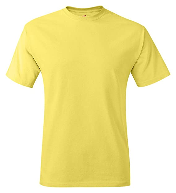 abca30c414d79 Image Unavailable. Image not available for. Color  Hanes 5250 Hanes TAGLESS  T-Shirt