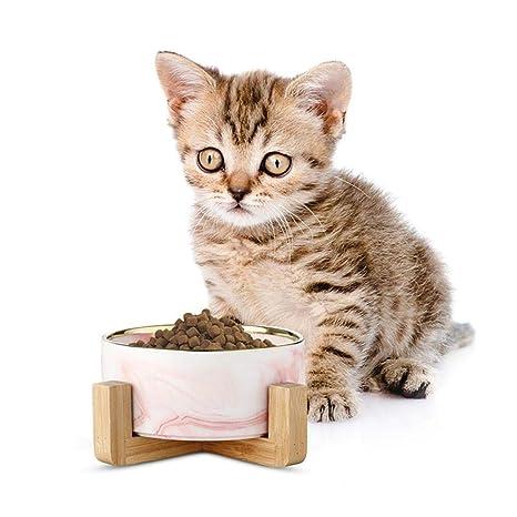 BYN-pet bowl Cerámica Alimentación de Mascotas Cuencos ...