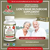 Activa Naturals Lions Mane Mushroom Supplement - 120 Veg. Capsules with Lion Mushrooms Extract Powder - 61zwpGhNGNL - Activa Naturals Lions Mane Mushroom Supplement – 120 Veg. Capsules with Lion Mushrooms Extract Powder
